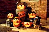 TravisFrost-1998-SesameStreetPumpkins