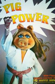 Pigpowerposter