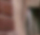 The Street We Live On