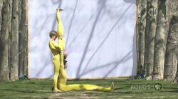 4161.L-acrobats