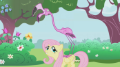 174px-Fluttershy pink flamingo S1E 03