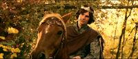 Edmund horse