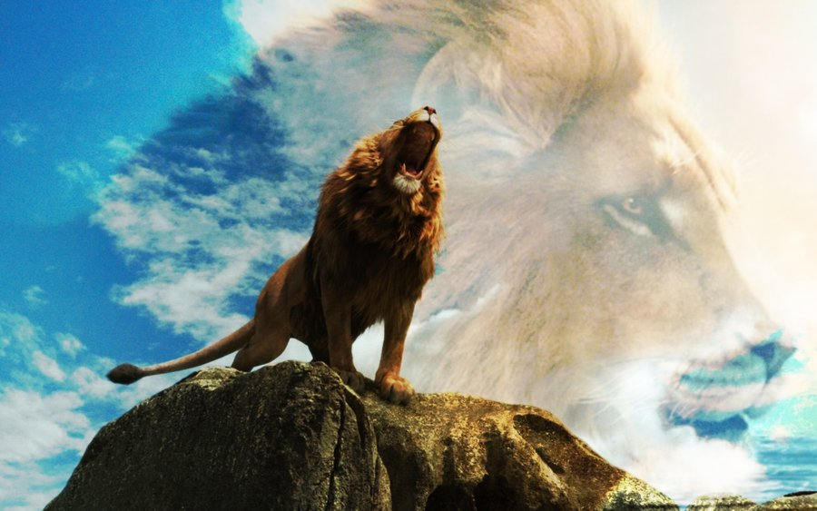 Aslan NARNIA 3 - the lion Full HD Wallpaper and Background ...