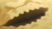 Destructive Sand Burial
