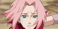 Sakura's Tears