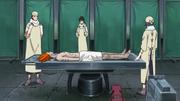 Animal Path autopsy