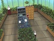 Suna Greenhouse Interior