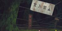 Jofuku Forest