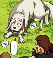 Akamaru (epilogue)