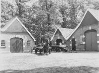 Lashawn Farm