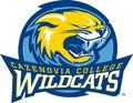 Cazenovia Wildcats.jpg