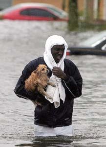 Man saving dog