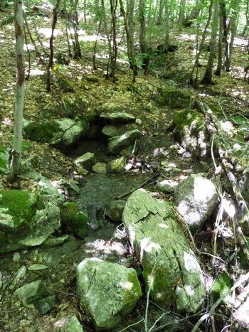 Sourse of the river Neretva (54753582)