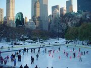 Family-vacations-central-park