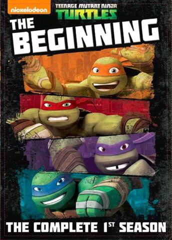 File:Teenage Mutant Ninja Turtles The Beginning Complete 1st Season.jpg