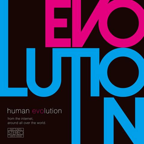 File:Human evolution.png