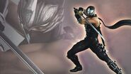 NG2 Render Char Ryu Warriors Orochi 3 Wallpaper1