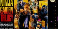 Ninja Gaiden Trilogy