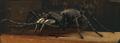 Carboniferous Arachnid Primeval
