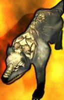 Animal direwolf