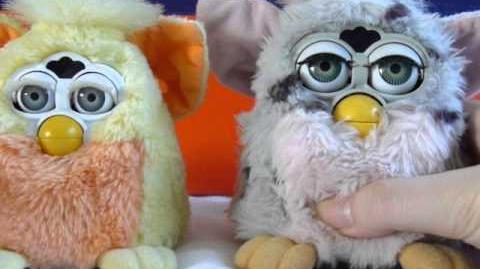 Furby Dah-noh-lah and Koh-koh