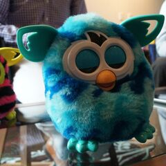 Furby Boom - Two Sleepy Furby Booms.