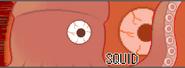 Battlecard Squid