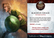 Magnus CC