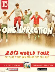 2013worldtourposter