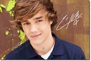 Liam-Payne-random-31327723-764-512