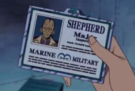 File:Shepherd ID.PNG