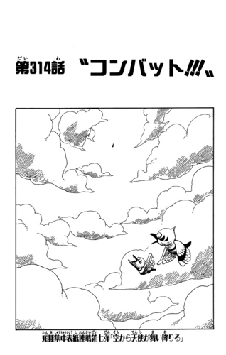 Chapter 314