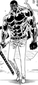 Vergo Full Body Haki.png