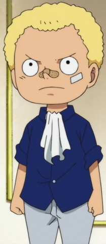 File:Sabo After Returning Home.png
