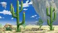 Merveille Desert.png