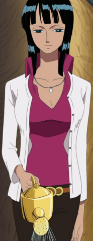 File:Robin's Last Thriller Bark Arc Outfit.png