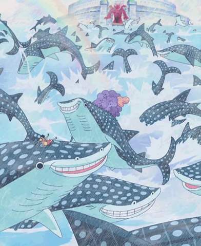 File:Whale Sharks.png