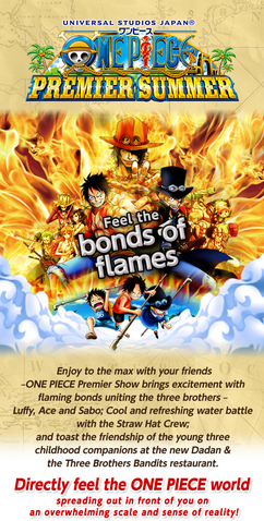 File:One Piece Premiere Summer Pamphlet.png