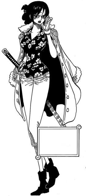 Zoro One Piece Time Skip Tashigi | Wiki One Pie...