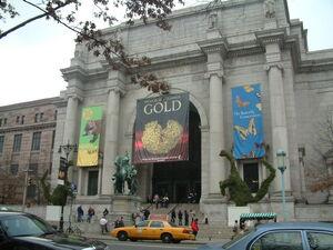 AMNH - New York