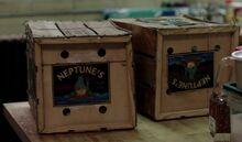Neptunes produce