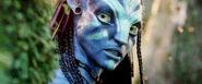 Avatar 025