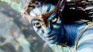 Avatar 029