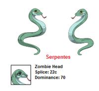Snake h