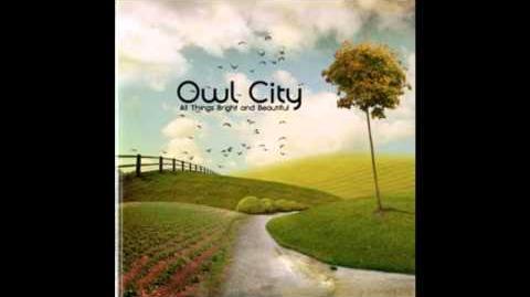 Owl CIty - Alligator Sky Feat