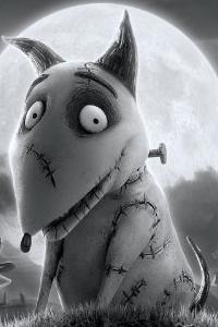 Sparky Dog Movie