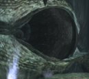 Eye of the Leviathan