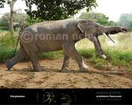 Platybelodon-738x591