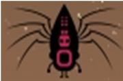 Spiderton