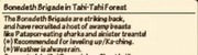 Tahi Forest